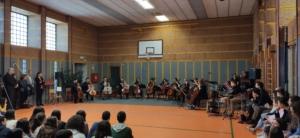 gruppo di violoncelli